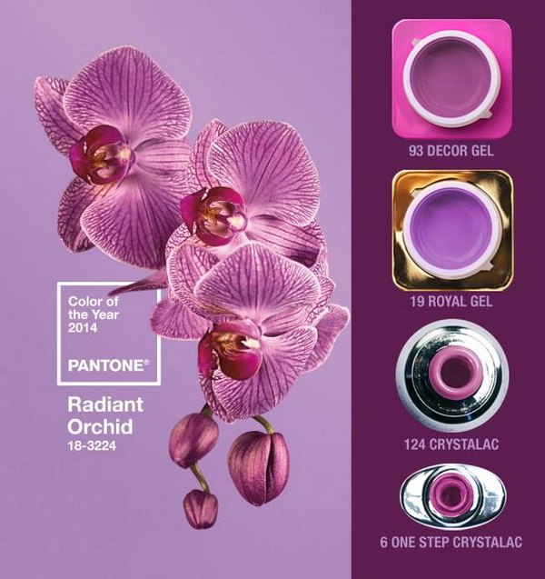 Color of the Year for 2014: Radiant orchid